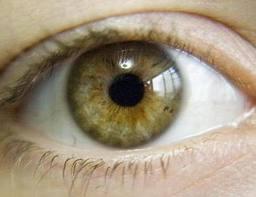 hazel-eyes